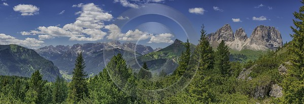 Passo Pordoi Pass Summer Dolomites Panoramic Alps Flower Stock Images Royalty Free Stock Images - 024863 - 16-06-2018 - 22554x7761 Pixel