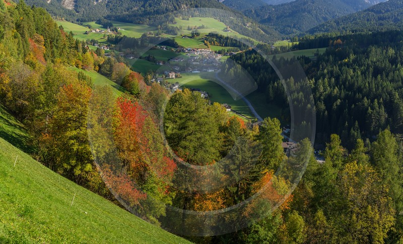 San Pietro South Tyrol Italy Panoramic Landscape Photography Forest Fine Art - 017289 - 12-10-2015 - 12118x7341 Pixel