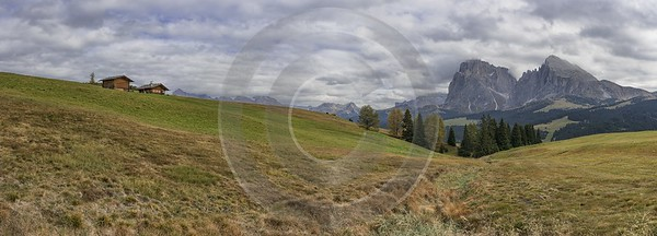 Alpe Siusi Seiser Alm Mont Seuc Autumn Tree Fine Art Photographers Island Fine Arts Photography - 025503 - 17-10-2018 - 17000x6117 Pixel
