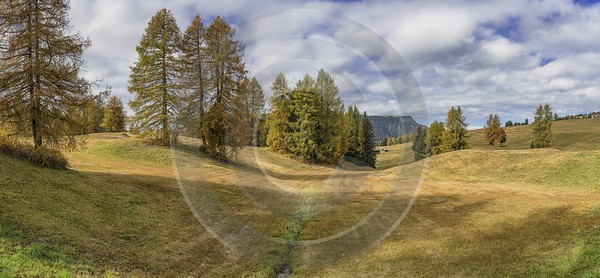 Alpe Siusi Seiser Alm Mont Seuc Autumn Tree Stock Image Art Prints Barn View Point - 025514 - 17-10-2018 - 16448x7611 Pixel