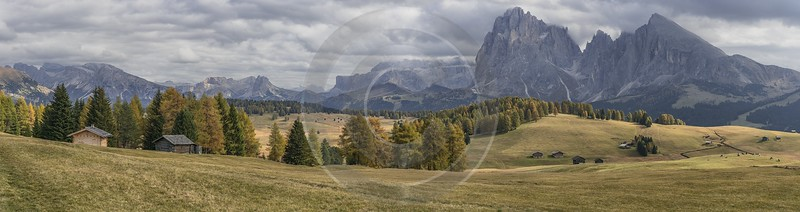 Alpe Siusi Seiser Alm Mont Seuc Autumn Tree City River Photography Prints For Sale - 025517 - 17-10-2018 - 26353x6975 Pixel
