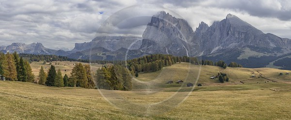Alpe Siusi Seiser Alm Mont Seuc Autumn Tree Nature Fine Art Printer City Photo Fine Art Summer - 025515 - 17-10-2018 - 16775x6921 Pixel