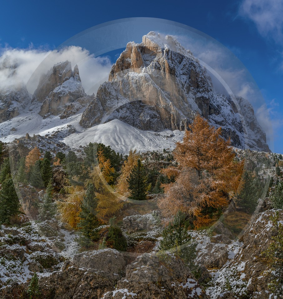 Sassolungo Passo Pordoi Wolkenstein South Tyrol Italy Panoramic Fine Art Photography Gallery Forest - 017362 - 15-10-2015 - 7502x7938 Pixel