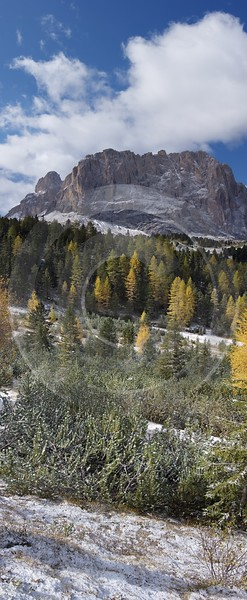 Sella Pass Val Gardena Langkofel Sasso Lungo Herbst Sea Grass Prints Stock Color Photography - 004956 - 12-10-2009 - 3945x9579 Pixel