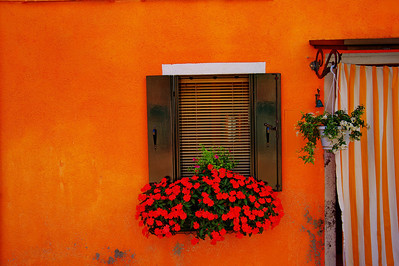 Baruno_Orange_window_red_flowers_D3S4733