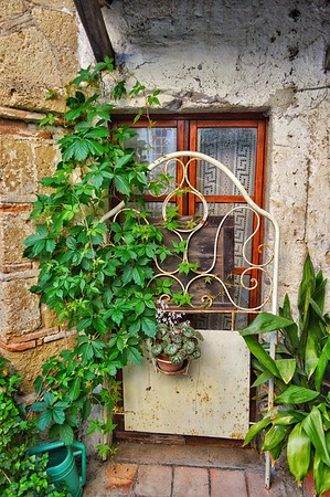 """A Real Flower Bed"" - Calcata, Italia"