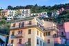 Colorful homes in the village of Manarola, Cinque terre, Liguria, Italy, Europe.