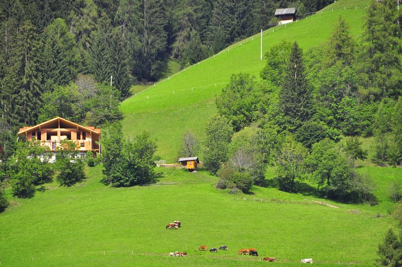 hillside farm by S. Candido