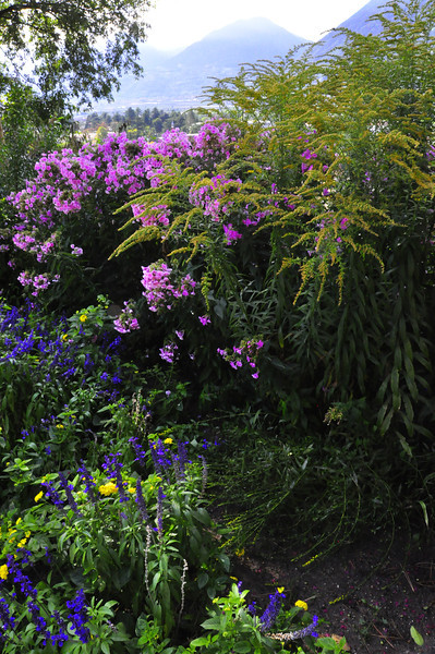 garden walk above Merano
