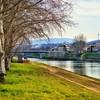 """""""Arno Walk"""" - Firenze"""