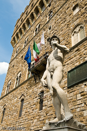 The David (this is actually a replica, the original had been moved to the Accademia years ago)