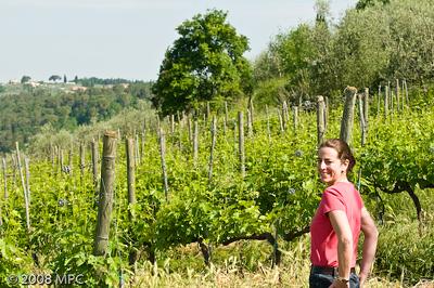 In the vineyards of i Greppi di Silli