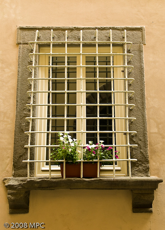 Typical window with flowers
