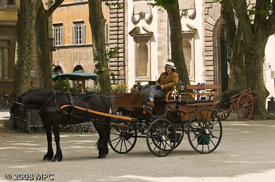 Horse drawn carriage in the Piazza Napoleone