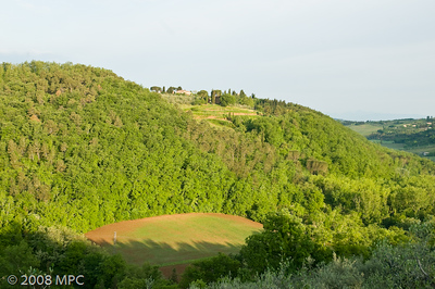 A view of the surrounding hillside from the agriturismo