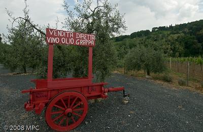 San_Gimignano_(1_of_3)