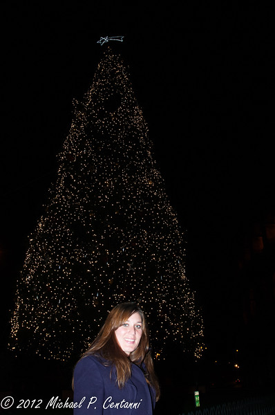 The Christmas tree at the Colosseum