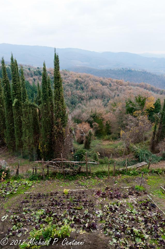 Castello di Volpaia, Radda in Chianti<br /> Vegetable Garden
