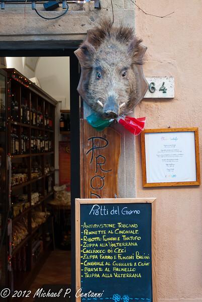 Cinghiale in Volterra