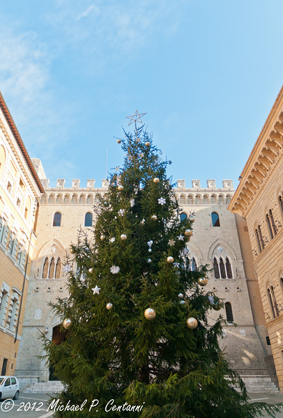 christmas tree near the Duomo di Siena