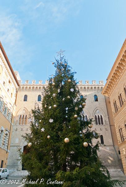 christmas tree near the Duomo di Siena