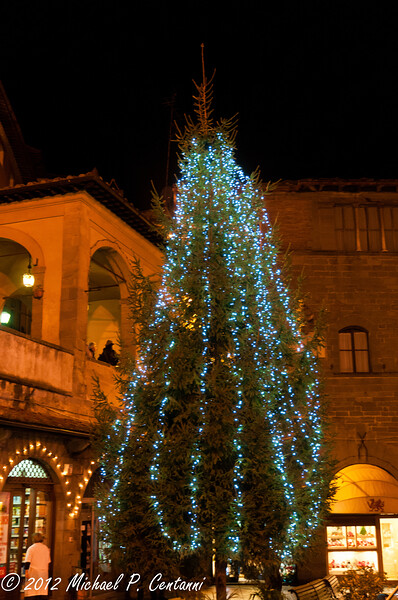 Christmas tree at night - Piazza della Reppublica, Cortona