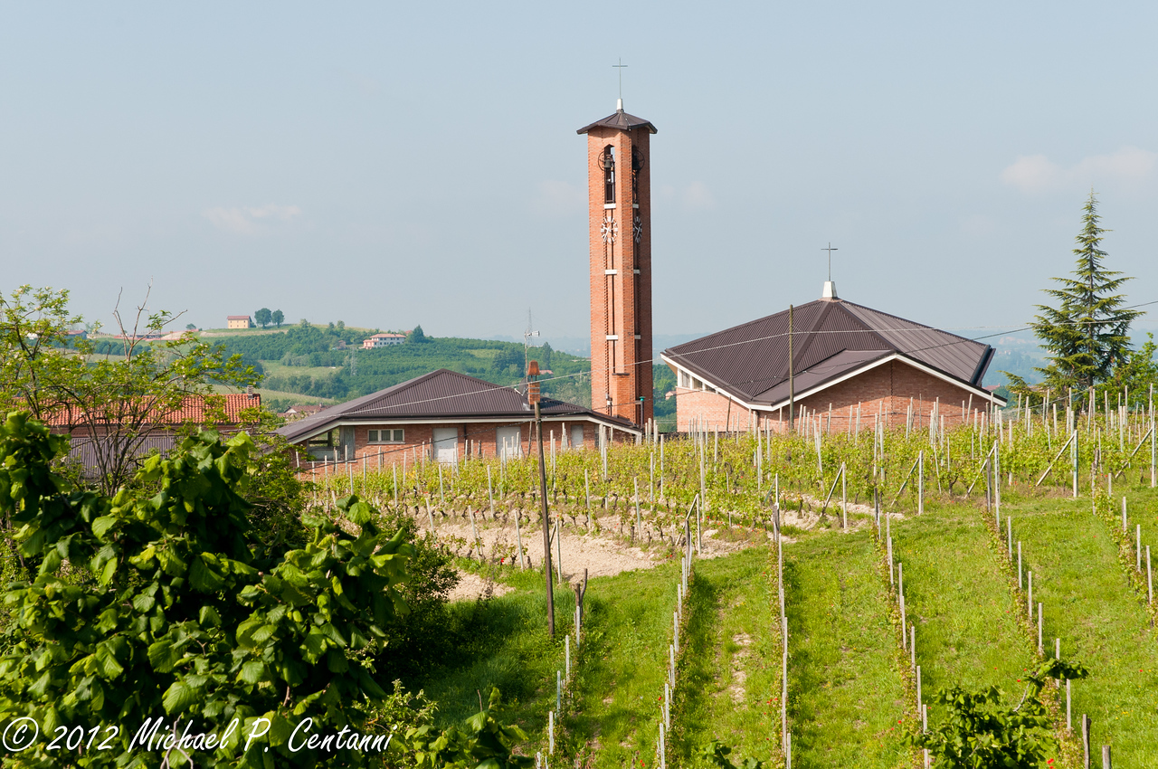 Vineyards and church