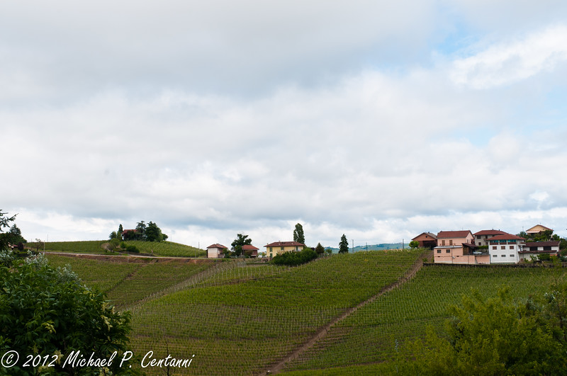 The countryside around Barbaresco