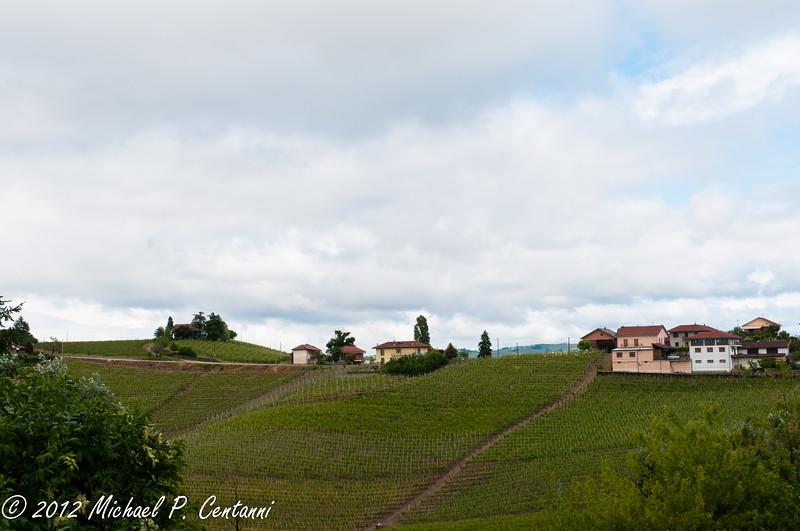 The countryside around Barbaresco