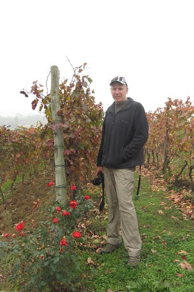 The vineyards around Cascina Castlet in Costiglione d'Asti