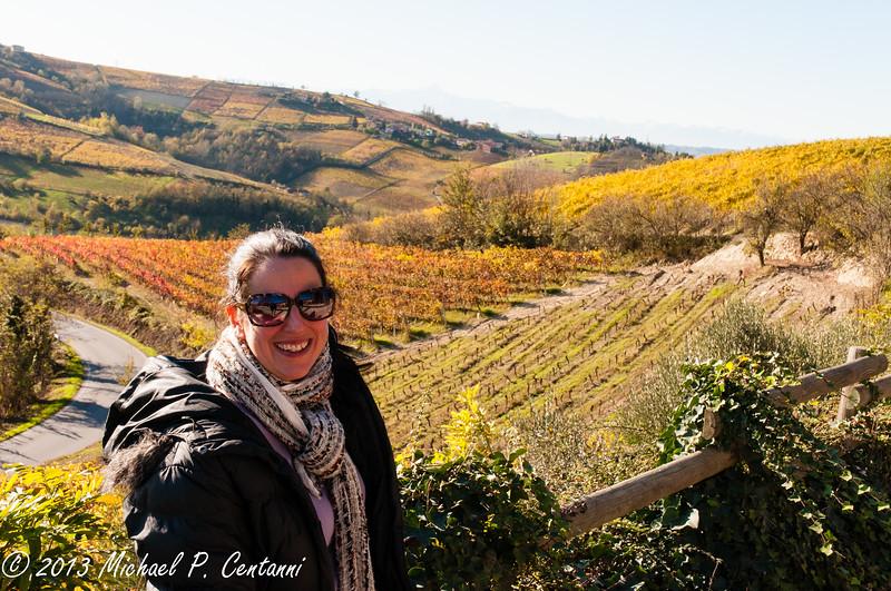 The vineyards around Nieve