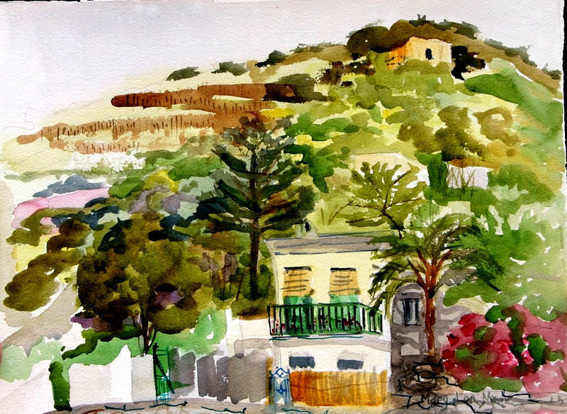 "Hillside View - Ravello, Italy 11"" x 15"" Price: $125. Unframed"