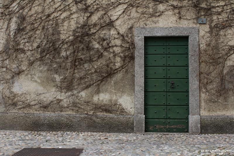 Vine Wall in Varenna, Italy