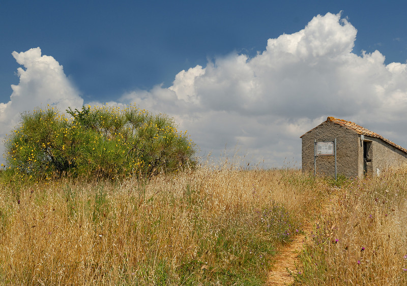 Tarquinia Etruscan Tombs