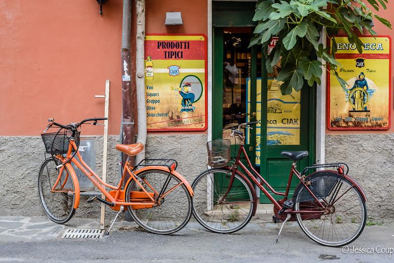 Bikes at the Shop