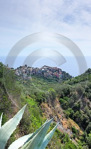 Corniglia Cinque Terre Ocean Town Viewpoint Cliff Fine Art Photo Fine Art Printer River - 002156 - 18-08-2007 - 4017x6542 Pixel