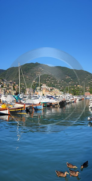 Rapallo Liguria Port Ship Yacht Boat Harbour Ocean Art Prints For Sale Western Art Prints For Sale - 002320 - 23-08-2007 - 4188x8213 Pixel