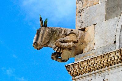 Pisa Cathedral Gargoyle