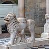White Lions Portal