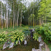 Villa Carlotta - Bamboo Garden