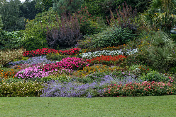 Villa Carlotta- Rock garden and succulents