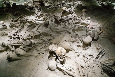 National Archeological Museum  - Human remains from Vesuvius eruption at Pompeii