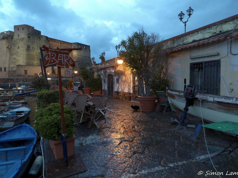 Napoli_2013 04_4495864