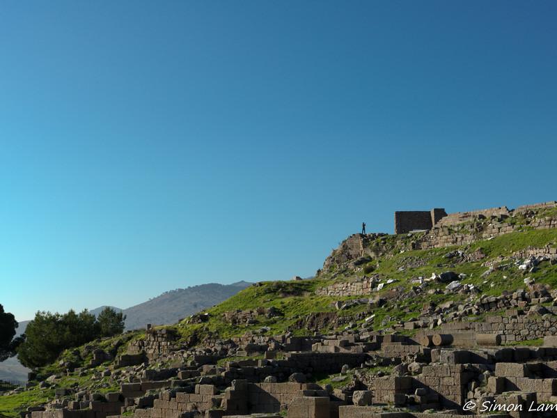 Pergamon_2012 12_4495009