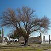 Pergamon_2012 12_4495051