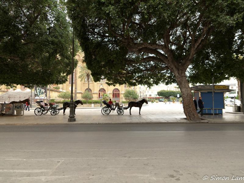 Palermo_2013 04_4496212