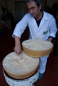 parmigiano024