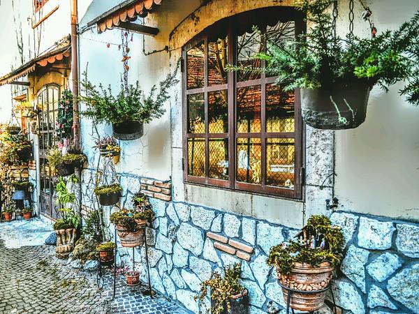 """Alpine Delight"" - Pescasseroli, Italy"