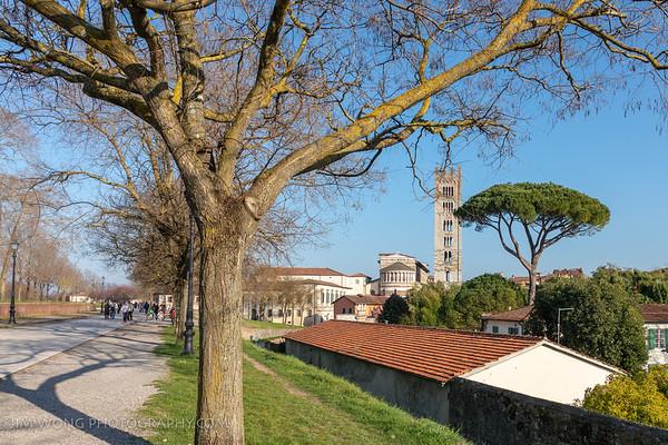 Basilica San Frediano
