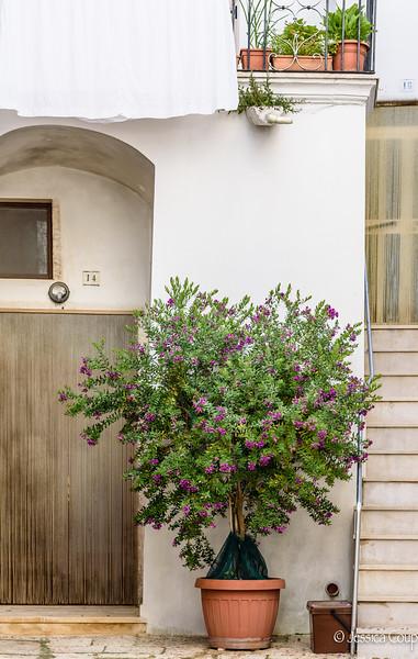 Doorway 14